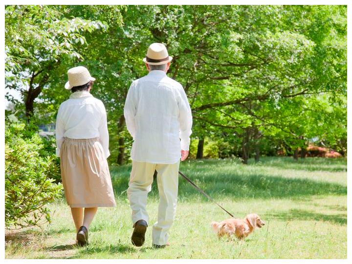 老夫婦散歩イメージ